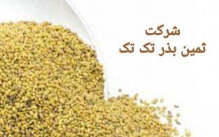 فروش انواع بذرهای یونجه