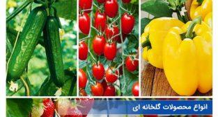 فروش محصولات گلخانه و هوا آزاد