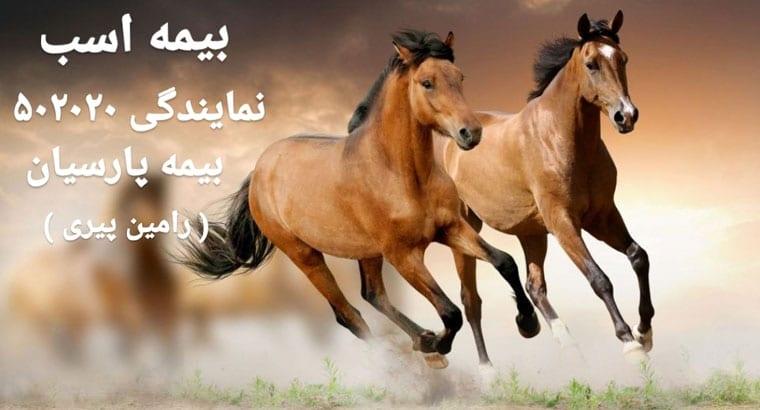 صدور بیمه اسب در تهران