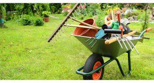 خدمات باغبانی و کشاورزی