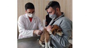 خدمات دامپزشکی در تهران