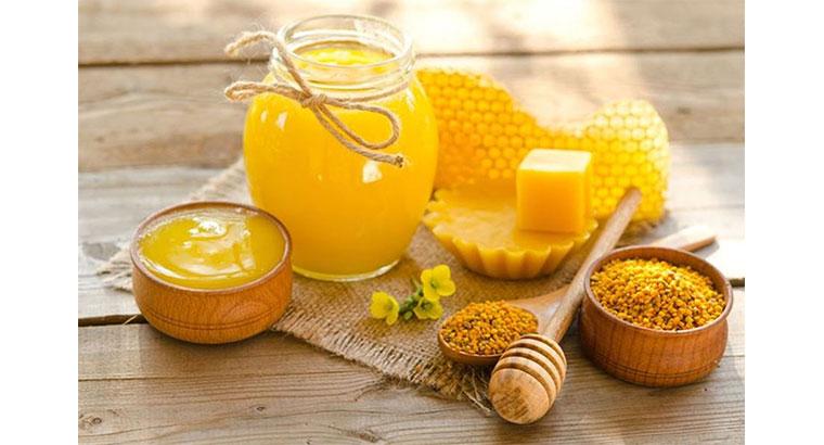 تولید کننده عسل طبیعی