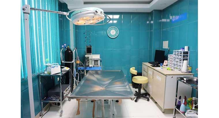کلینیک دامپزشکی شهرک گلستان